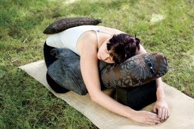 Двудневен семинар Йога-Терапия за проблеми с гърба и кръста – април 2015 г., студио Шамбала