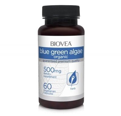 СИНЬО-ЗЕЛЕНИ ВОДОРАСЛИ - за по-добра памет и имунитет - таблетки 500 мг. х 60, BIOVEA