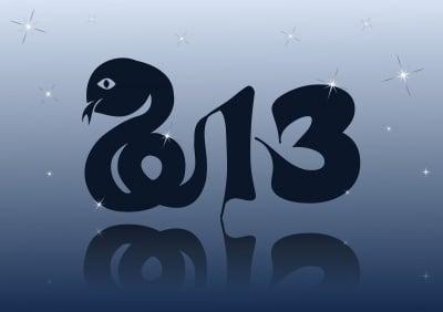 2013-Водната змия сменя Водния дракон