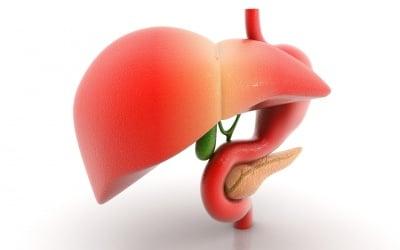 Как да пречистим тялото и черния дроб с алтернативни методи