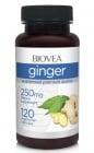 ДЖИНДЖИФИЛ - подкрепя сърдечно-съдовата система - капсули 250 мг. х 120, BIOVEA