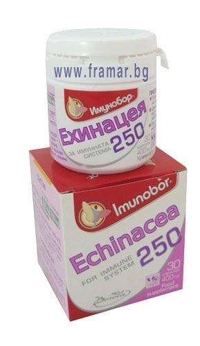 ИМУНОБОР ЕХИНАЦЕЯ капс. 400 мг. * 30