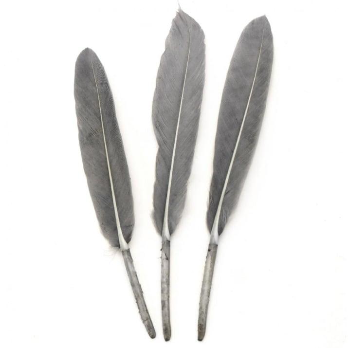 Перо 100~150x15~20 мм сиво -10 броя