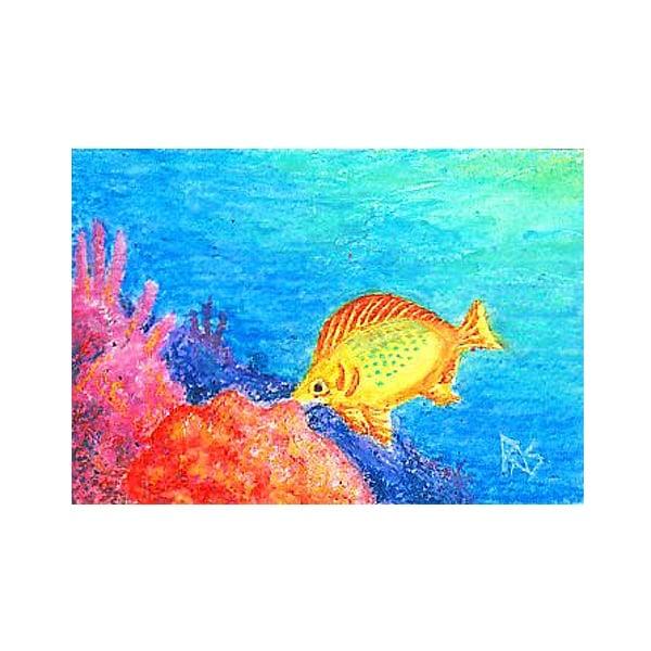 Комплект меки пастели акварелни AQUA STIC, 40 цвята