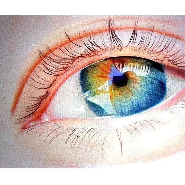 Дисплей цветни моливи CREALL Maxi, лакирани, 12 цвята, 144 бр.