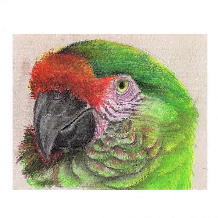 Комплект пастели CretaColor, PASTEL CARRE, 36 цвята