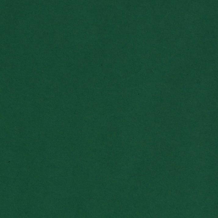Фото картон гладък/мат, 300 g/m2, А4, 1 лист Фото картон гладък/мат, 300 g/m2, А4, 1л, елхово зелен