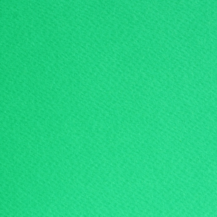 Фото картон едностр.оцв., 220 g/m2, 70 x 100 cm, 1л, ябълково зелен