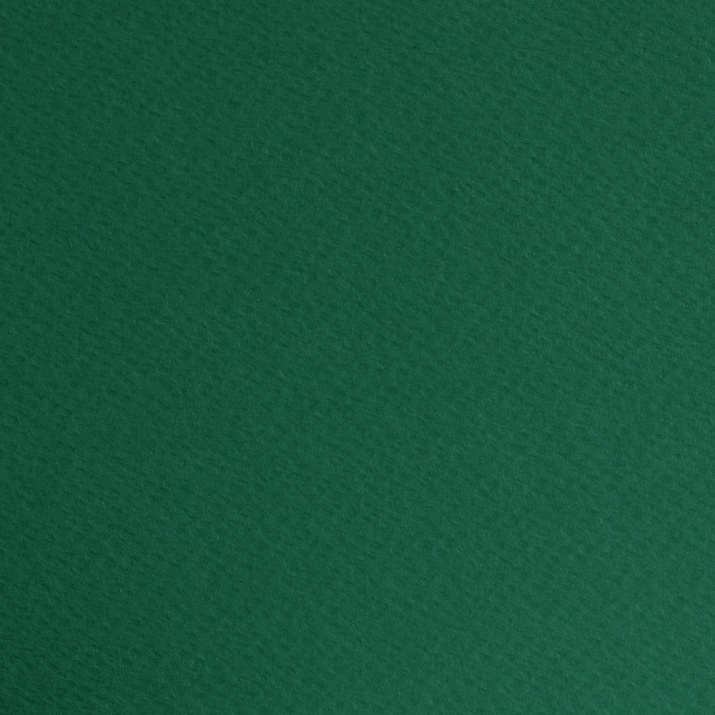 Фото картон едностранно грапав, 220 g/m2, 50 x 70 cm, 1 лист Фото картон едностр.оцв., 220 g/m2, 50 x 70 cm, 1л, елхово зелен