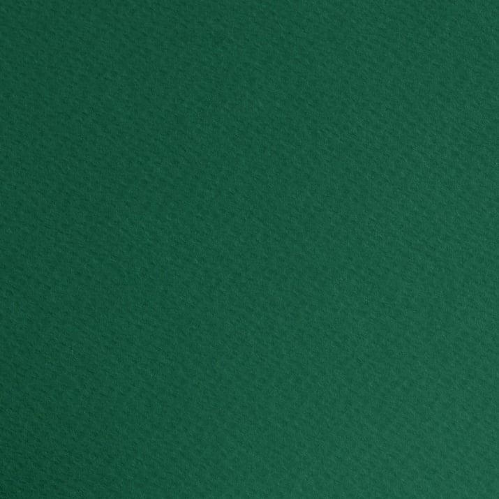Фото картон едностранно грапав, 220 g/m2, 70 x 100 cm, 1 лист Фото картон едностр.оцв., 220 g/m2, 70 x 100 cm, 1л, елхово зелен
