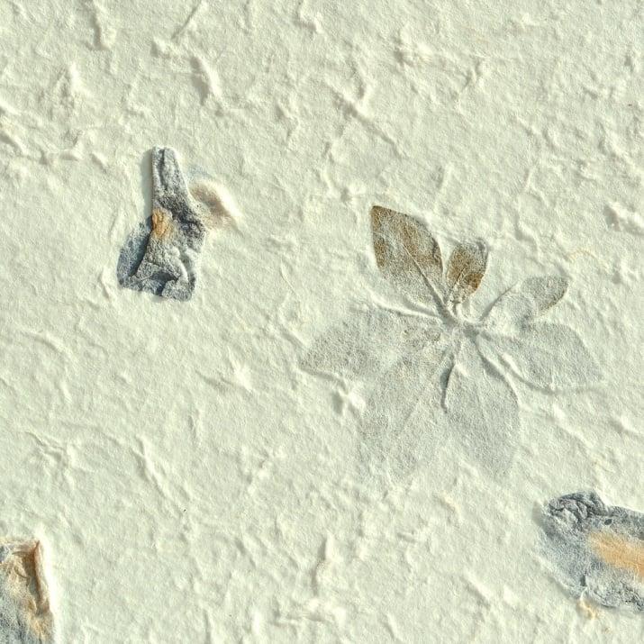 Хартия ръчна естествена, 100 g/m2, 55 x 80cm, 1л, листа и сини цветове