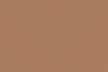 Крафт картон, 220 g/m2, А4, 1 л. Крафт картон, 220 g/m2, А4, 1 лист, кафява кожа