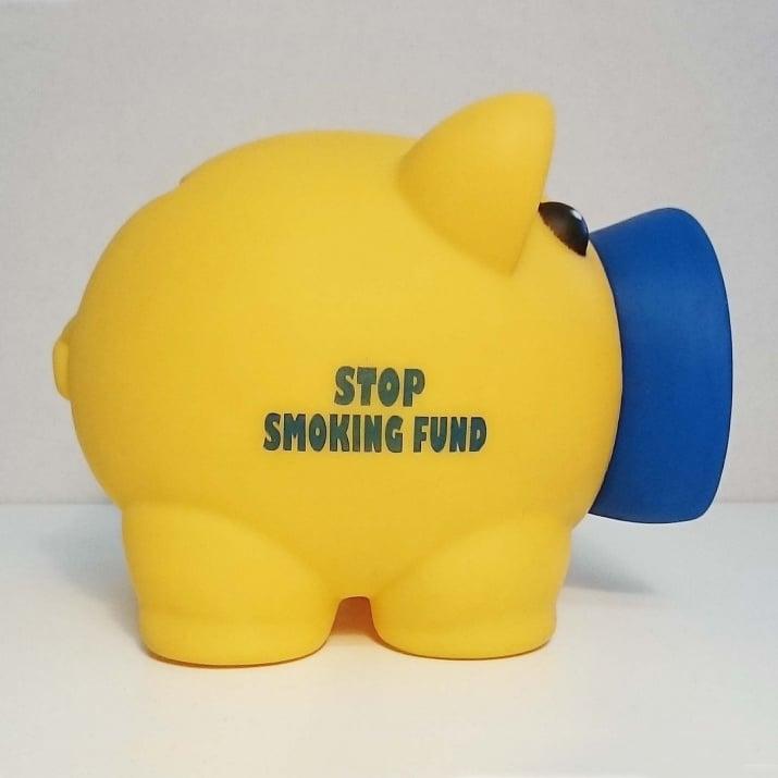 Касичка-прасенце STOP SMOKING FUND, пластмаса