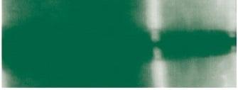Текстилна боя за батик, JAVANA, 75g Текстилна боя за батик, JAVANA, 70 g, Dark Green