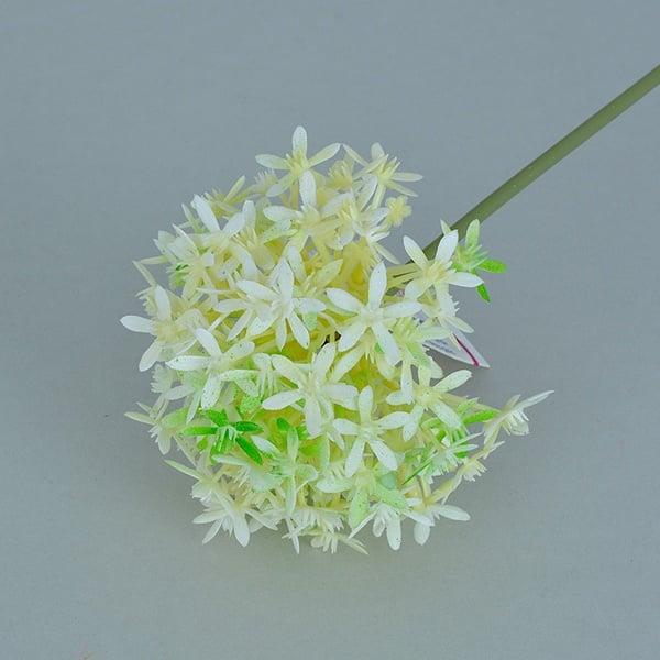 Allium Globemaster, ф 7 x 53 cm, крем