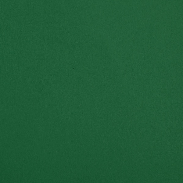 Цветен картон, 130 g/m2, 70 x 100 cm, 1л  Цветен картон, 130 g/m2, 70 x 100 cm, 1л, елхово зелен