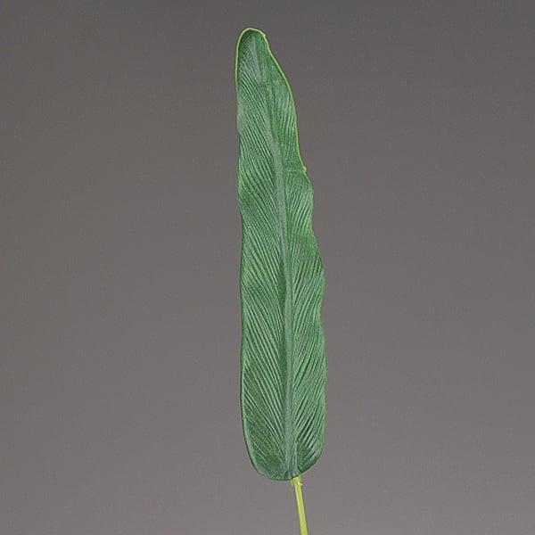 Декоративен лист, Strelizienblatt, 68 cm, зелен