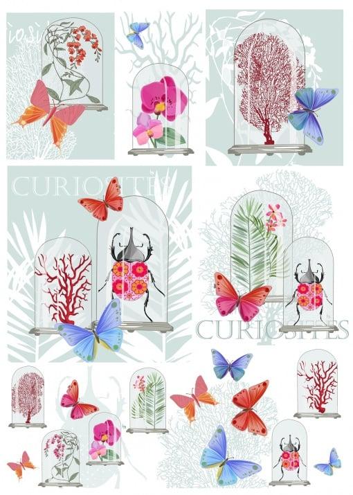 Декупажна тишу хартия, CURIOSITES, 35 x 50 cm