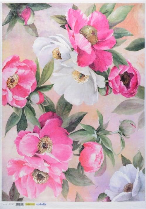 Декупажна тишу хартия, PEONIE, 50 x 70 cm