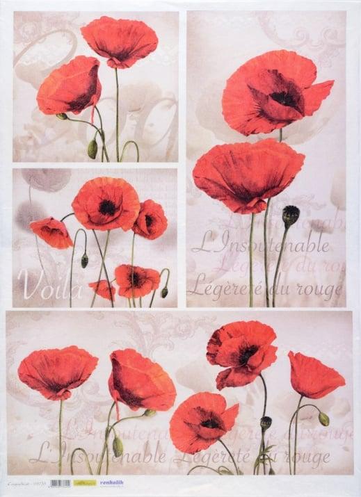 Декупажна тишу хартия, COQUELICOT, 50 x 70 cm