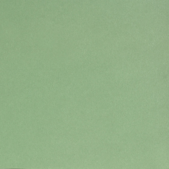 Картичка цветен картон RicoDesign, PAPER POETRY, A4 Картичка цветен картон RicoDesign, PAPER POETRY, A4, 240 g, LINDGRUEN
