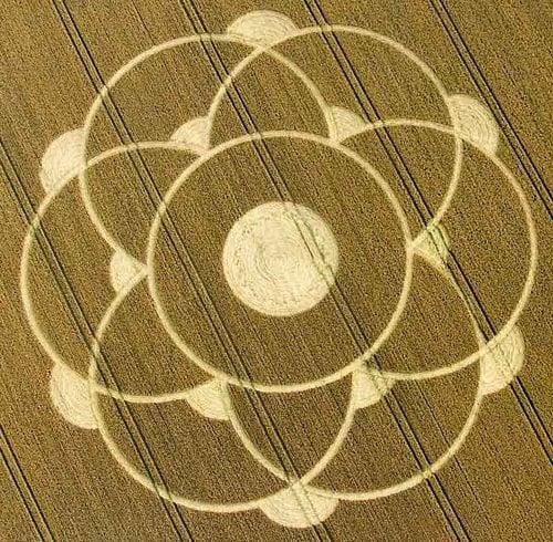 Крион: Науката
