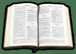 Библия (малък формат, тъмно зелена)