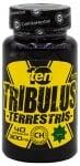 ТЕН ТРИБУЛИС ТЕРЕСТРИС капсули 300 мг * 40 ЦВЕТИТА ХЕРБАЛ