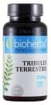 БИОХЕРБА ТРИБУЛУС ТЕРЕСТРИС капсули 250 мг. * 100