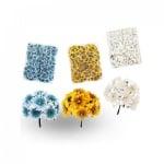 Букет от цветя, COSMOPOLIS