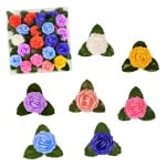 Рози с листенца /24 броя в стек - микс/