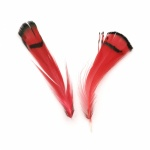 Перо 30~80 мм цвят червен, черен -10 броя