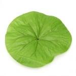 Листо от лилия за монтаж с пънче 110x125 мм - 4 броя