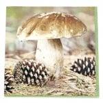 Салфетка HOME FASHION 33x33см трипластова Fungus -1 брой