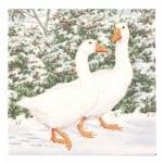 Салфетка HOME FASHION 33x33см трипластова Geese Couple -1 брой