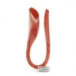 """Ленти за квилинг перлени (хартия 120 гр) 6 мм/ 35 см Fabriano """"Daiquiri"""" цвят оранжев -50 бр."""