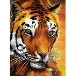 Комплект цветни маслени пастели CREALL Oily 12 цвята, 12 бр.