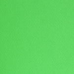 Фото картон едностр.оцв., 220 g/m2, 70 x 100 cm, 1л, лайм зелен