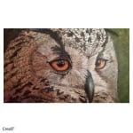 Комплект акрилна боя CREALL, STUDIO ACRYLICS, 5 x120 ml