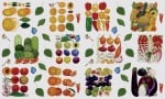 Декупажна хартия, 60 gr/m2, 33 x 48 cm, 1л, Плодове и зеленчуци