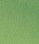 Decoupaint Antik, 50 ml, боя с ефектна структура, папрат