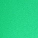 Фото картон едностр.оцв., 220 g/m2, А4, 1л, ябълково зелен