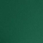 Фото картон едностр.оцв., 220 g/m2, А4, 1л, елхово зелен