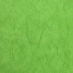 Хартия копринена с влакна, 25 g/m2, 50 x 70 cm, 1л, майскозелена