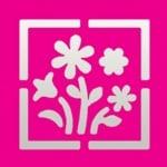 Пънч квадратен + мотив, Букет цветя, ~ 22 x 22 mm