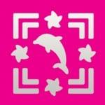 Пънч квадратен с двойна рамка, Делфин + Морски звезди, ~ 22 x 22 mm