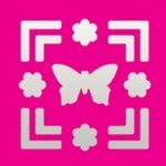 Пънч квадратен с двойна рамка, Пеперуда + Цветя, ~ 22 x 22 mm
