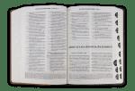 Библия (среден фомат, двуцветна)