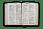 Рустик Библия