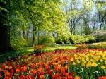 Нумеролого-психологичен хороскоп за месец Май 2014